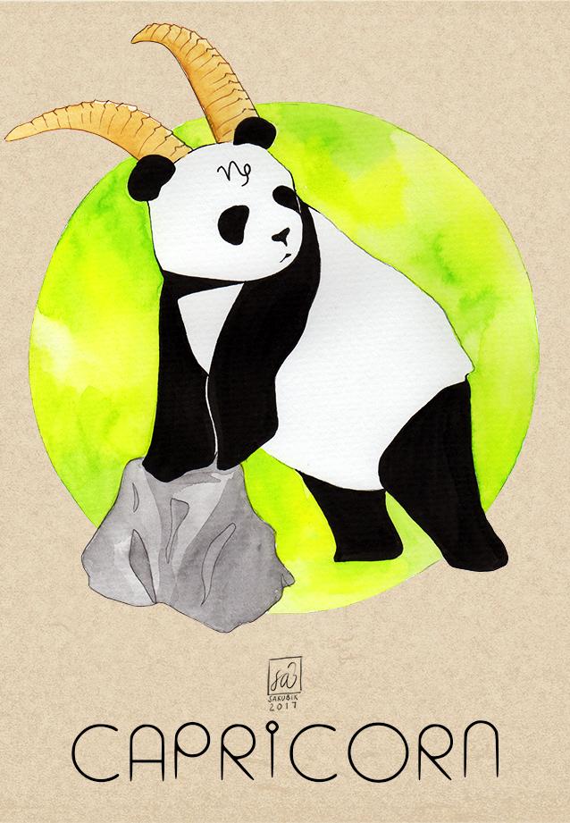 Panda Capricorn